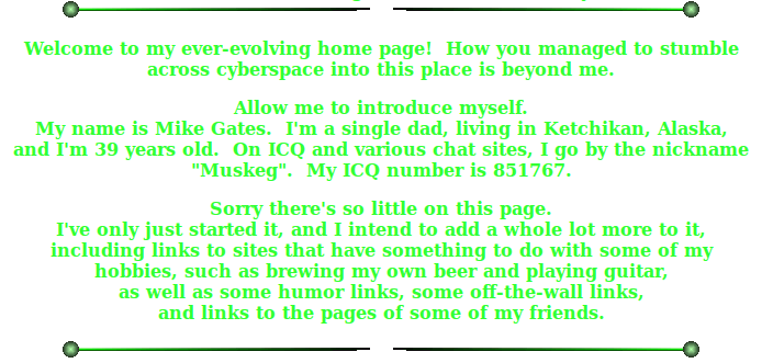 GeoCities Oral History #4  Mike Gates | One Terabyte of